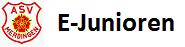 logo-E-Jun
